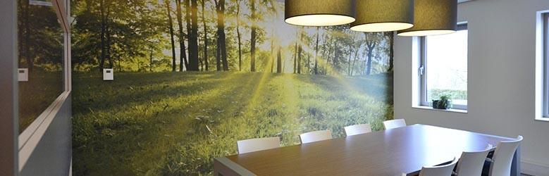 Fotobehang met bos, 3 inspirerende voorbeelden!