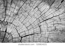 old-gray-cracked-wood-texture-260nw-520814221